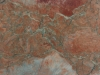 duchessa-rosata